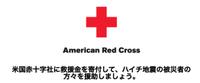 Americanredcross20100116_1