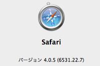 Safari405