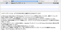 Iwork905_20110106