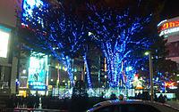 Shinjukueast_20111122m