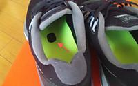 Nikelunarglidep4_2_20120902m_2