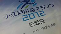 Koedomarathon2012_1_20121125m