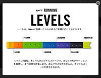 Nikelevel_20130804m