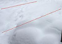 Snow_2_20140215