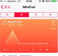 Nikefuel_3_20150220m