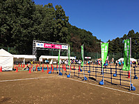 Takaosanmarathon_2_20151025m