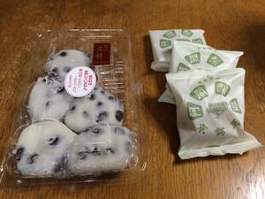 Kyotosourv_20160613