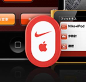 Nikeipodsensor20110210