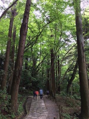 Naritasan_3_20170504