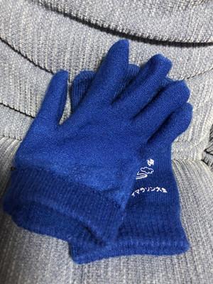 Gloveforiphone_3_20180126