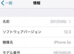 Ios123_iphone5s_20190519a
