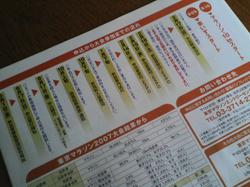 Tokyomarathon2008_2